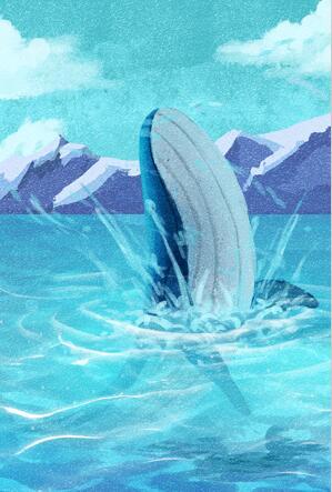 海洋保护组织发展报告